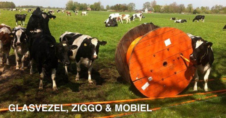 Glasvezel, kabel en mobiele data in het buitengebied rond de Veluwe